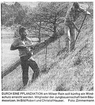 Dorferneuerung: Windschutz