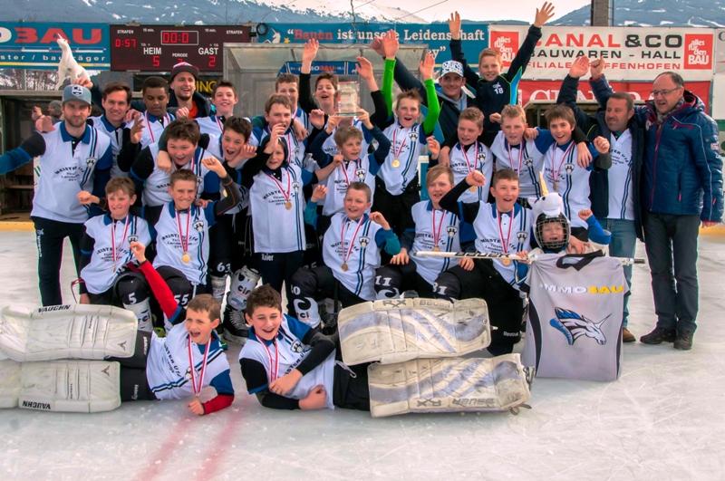 Eishockey: Saison 2014/15